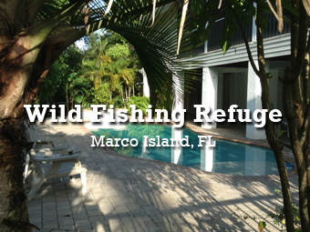 Wild Fishing Refuge - Marco Island, Florida